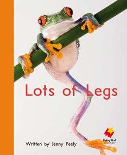 Lots of Legs
