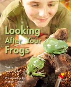 Looking After Your Frogs