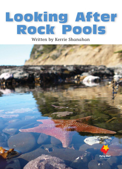 Looking After Rock Pools