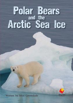 Polar Bears and the Arctic Sea Ice
